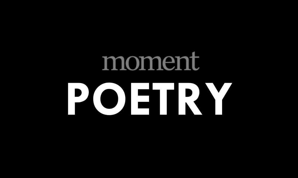 Poem | The Season When My Life Turned